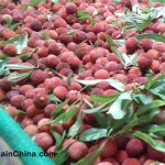 Local and imported fruits in China