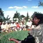 founder-of-the-Green-Belt-Wangari-Maathai-Kenya